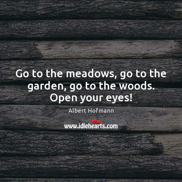 Image, Go to the meadows, go to the garden, go to the woods. Open your eyes!