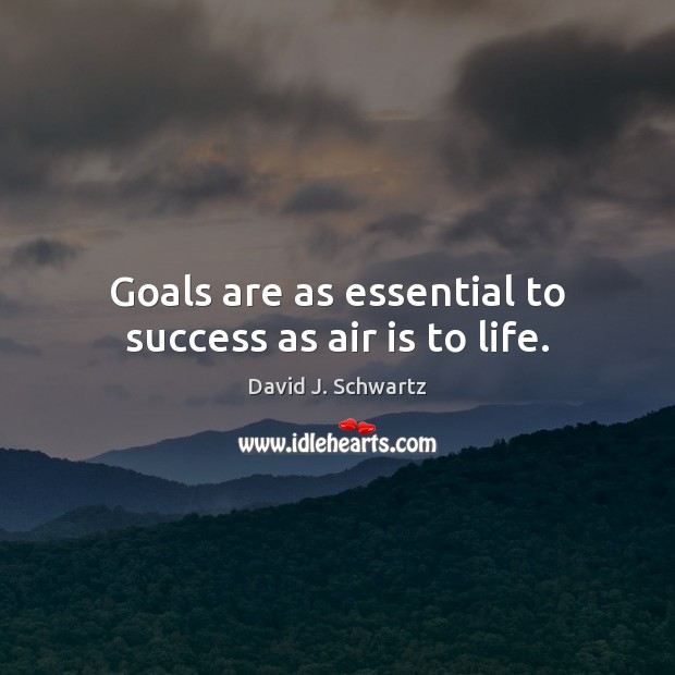 Goals are as essential to success as air is to life. David J. Schwartz Picture Quote