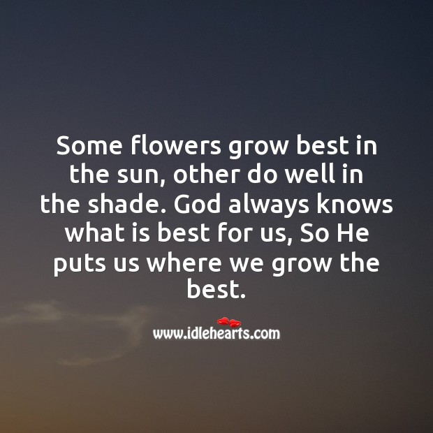 God always knows what is best for us Image