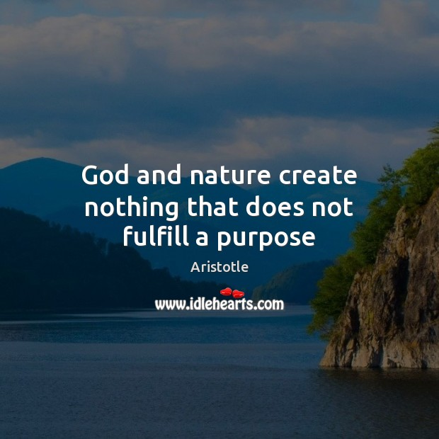 Image, God and nature create nothing that does not fulfill a purpose