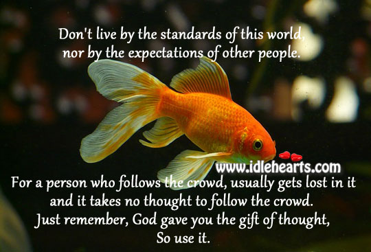 Don't Live By The Standards Of This World