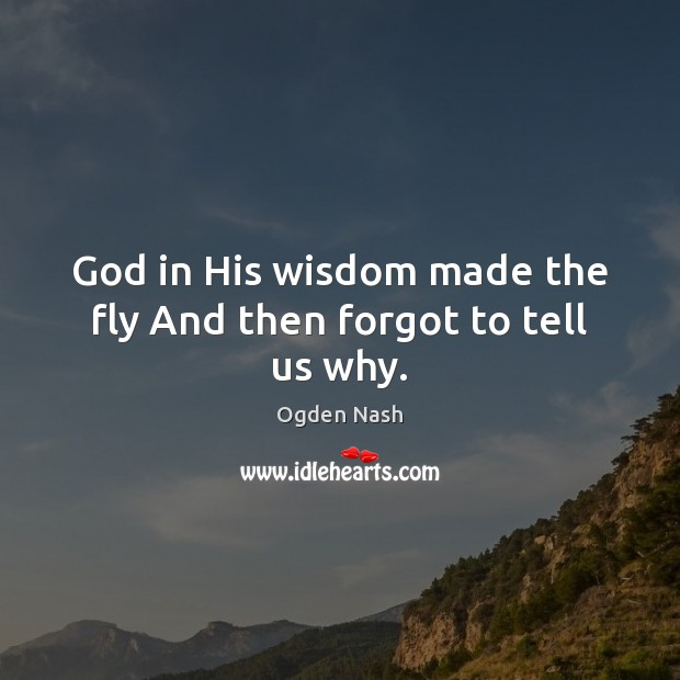God in His wisdom made the fly And then forgot to tell us why. Ogden Nash Picture Quote
