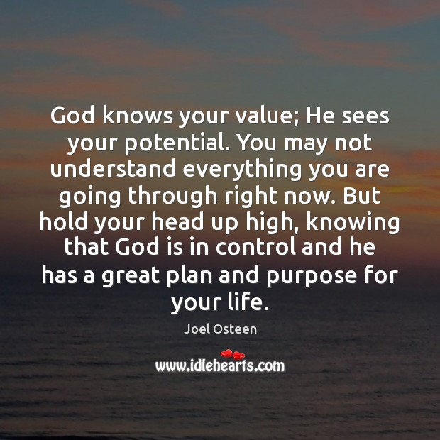 Image, God knows your value; He sees your potential. You may not understand