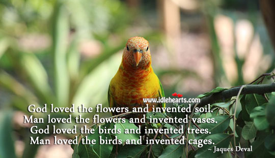 Image, God loved the birds and invented trees.