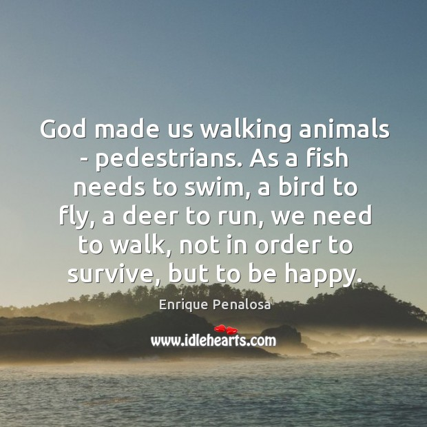Image, God made us walking animals – pedestrians. As a fish needs to