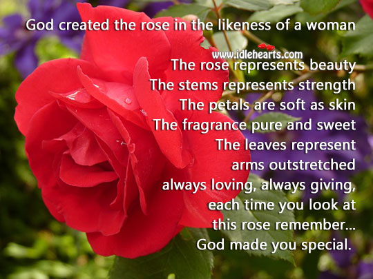 Image, God created the rose in the likeness of a woman