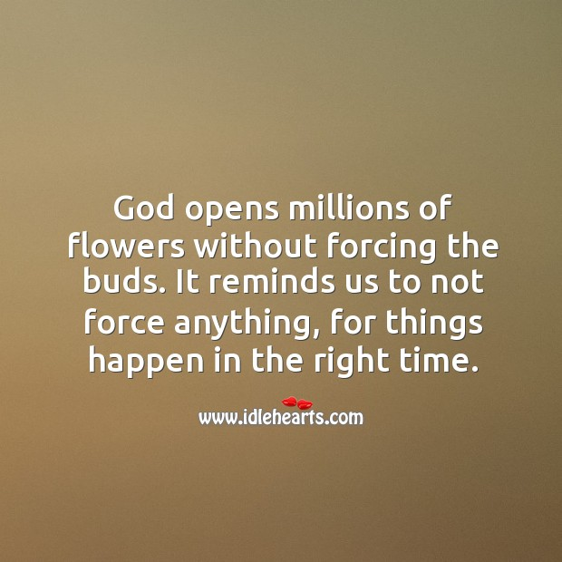 God opens millions of flowers without forcing the buds. Image