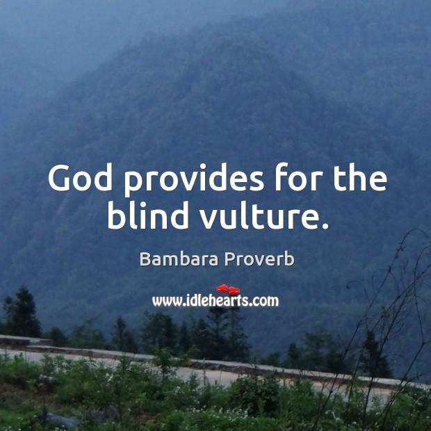 Image, God provides for the blind vulture.
