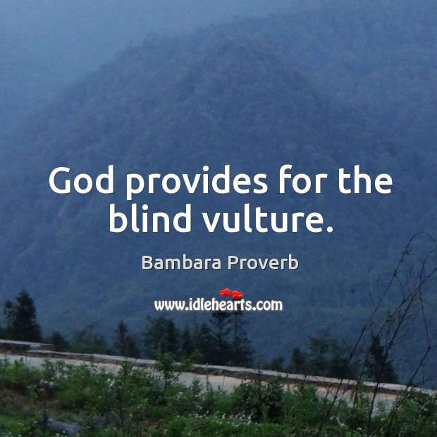 God provides for the blind vulture. Bambara Proverbs Image