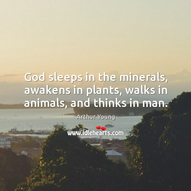 Image, God sleeps in the minerals, awakens in plants, walks in animals, and thinks in man.