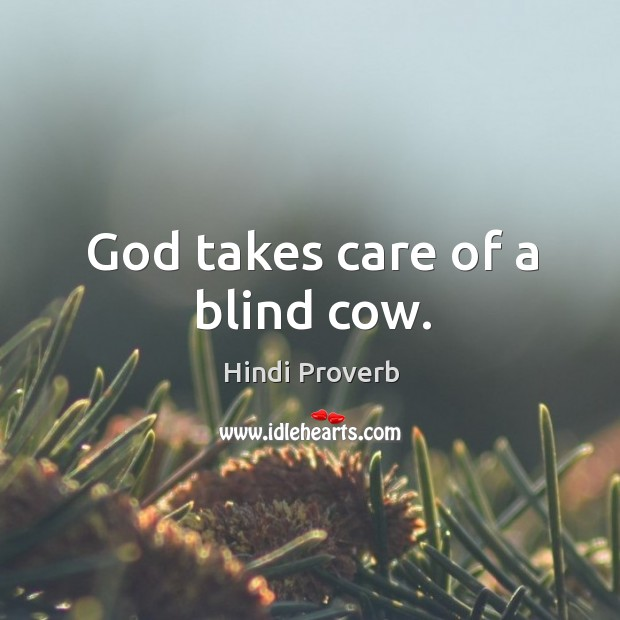 God takes care of a blind cow. Hindi Proverbs Image