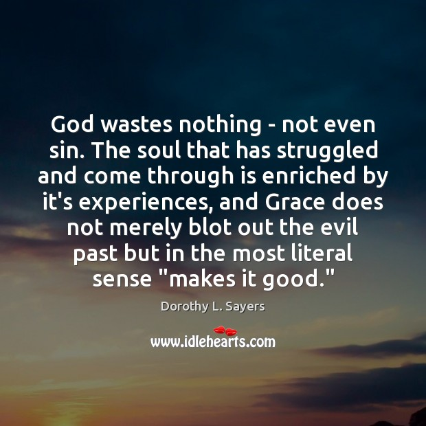 Image, God wastes nothing – not even sin. The soul that has struggled