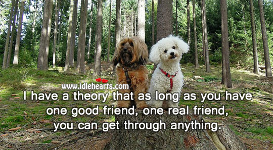 One good friend, one real friend, you can get through anything. Real Friends Quotes Image