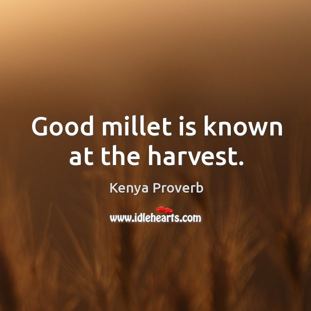 Good millet is known at the harvest. Kenya Proverbs Image