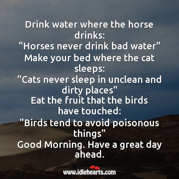 Good Morning. Have a great day ahead. Water Quotes Image
