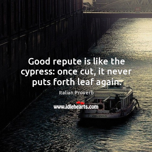 Image, Good repute is like the cypress: once cut, it never puts forth leaf again.