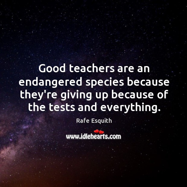 Good teachers are an endangered species because they're giving up because of Rafe Esquith Picture Quote