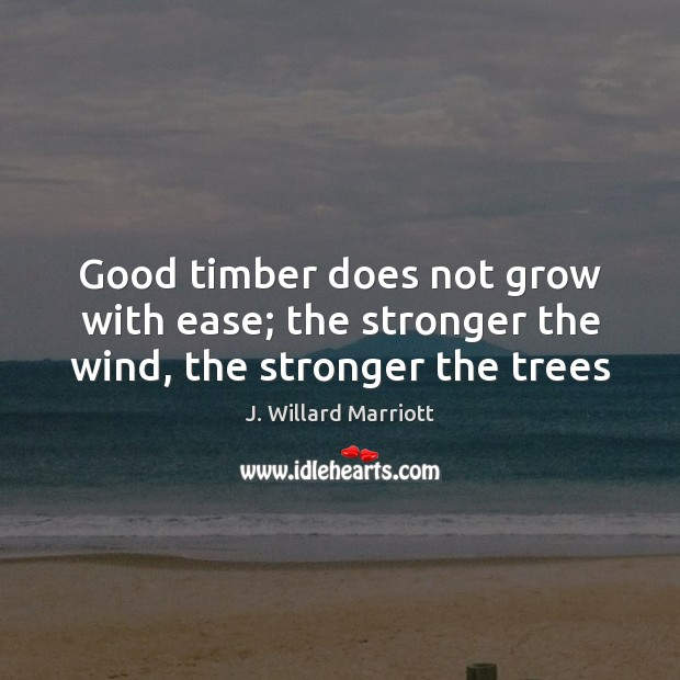 Good timber does not grow with ease; the stronger the wind, the stronger the trees Image