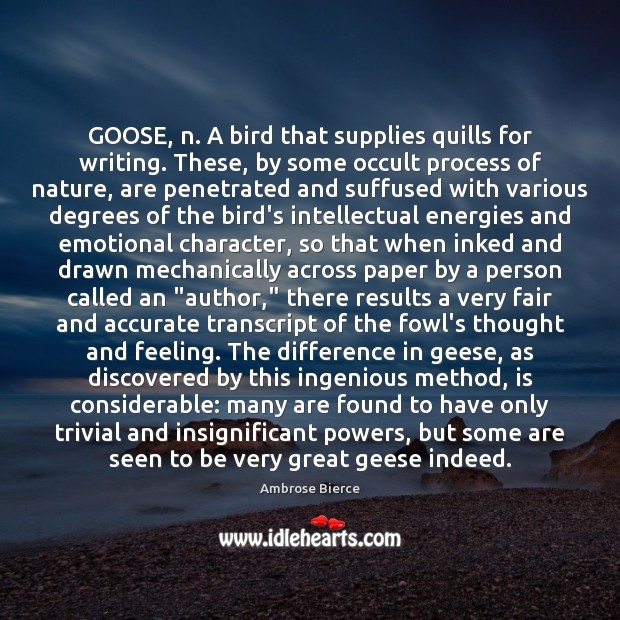 Image, GOOSE, n. A bird that supplies quills for writing. These, by some