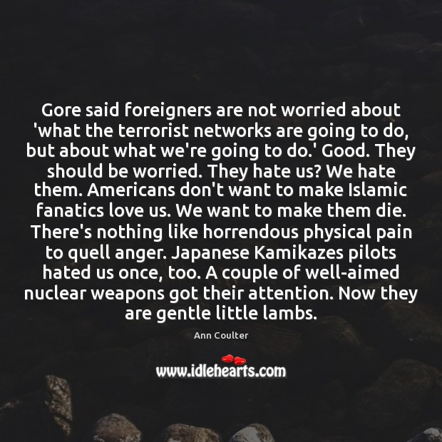 Gore said foreigners are not worried about 'what the terrorist networks are Image