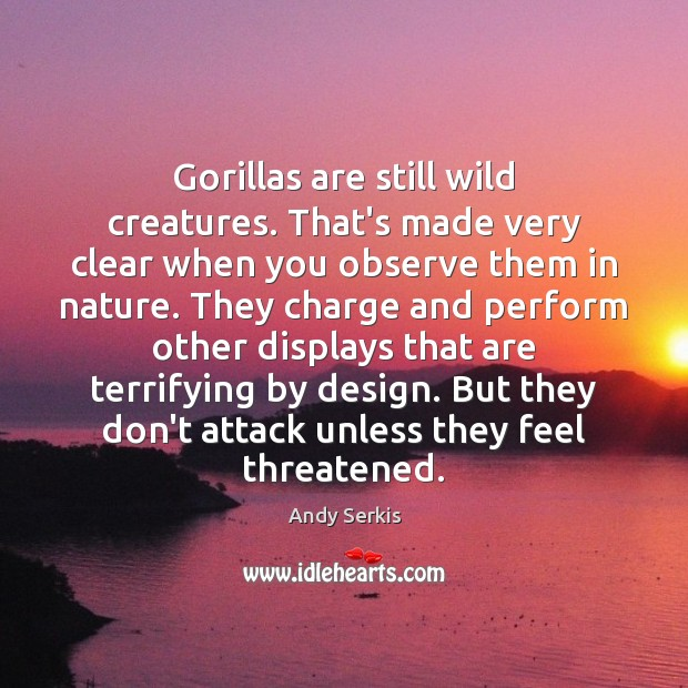 Gorillas are still wild creatures. That's made very clear when you observe Andy Serkis Picture Quote