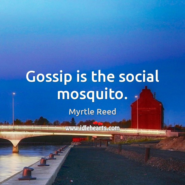 Gossip is the social mosquito. Myrtle Reed Picture Quote