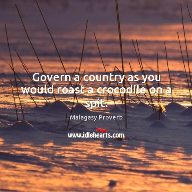 Govern a country as you would roast a crocodile on a spit. Malagasy Proverbs Image