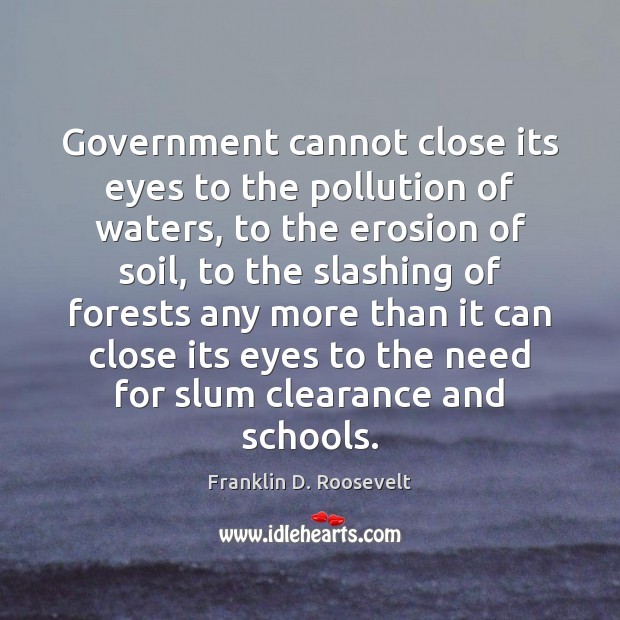 Government cannot close its eyes to the pollution of waters, to the Franklin D. Roosevelt Picture Quote
