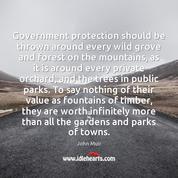 Government protection should be thrown around every wild grove and forest on John Muir Picture Quote