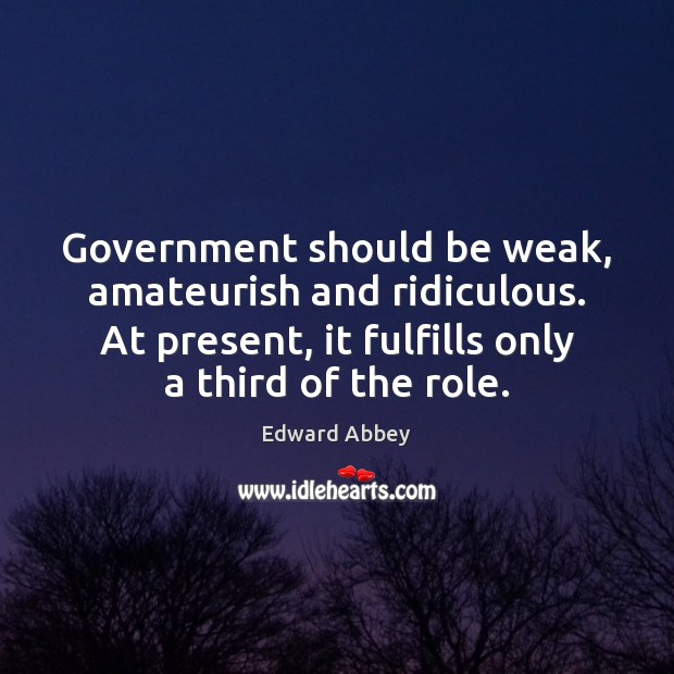 Government should be weak, amateurish and ridiculous. At present, it fulfills only Image
