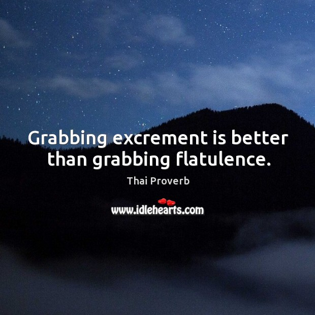 Grabbing excrement is better than grabbing flatulence. Thai Proverbs Image