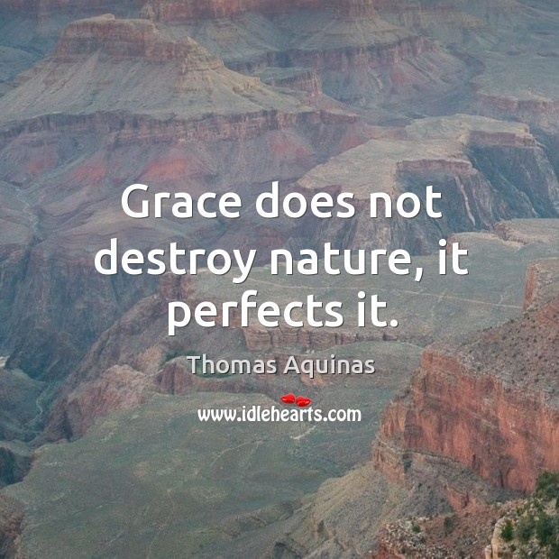 Image about Grace does not destroy nature, it perfects it.