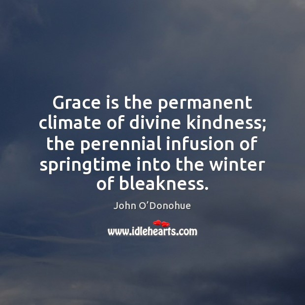 Grace is the permanent climate of divine kindness; the perennial infusion of John O'Donohue Picture Quote