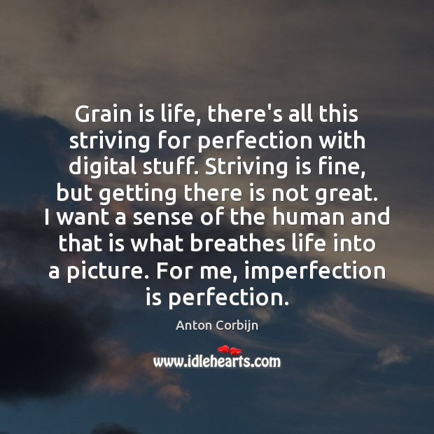 Grain is life, there's all this striving for perfection with digital stuff. Imperfection Quotes Image