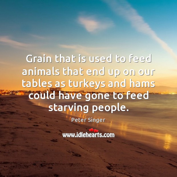 Grain that is used to feed animals that end up on our Image