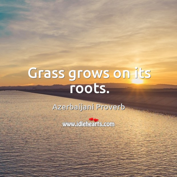 Grass grows on its roots. Azerbaijani Proverbs Image