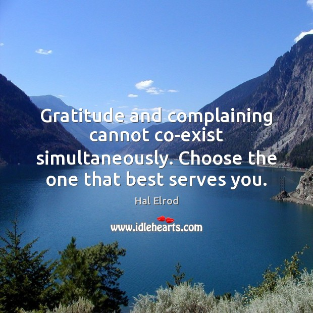Gratitude and complaining cannot co-exist simultaneously. Choose the one that best serves Hal Elrod Picture Quote