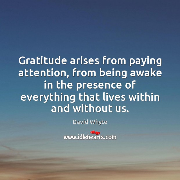 Gratitude arises from paying attention, from being awake in the presence of Image