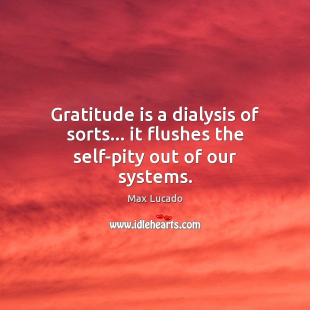 Image, Gratitude is a dialysis of sorts… it flushes the self-pity out of our systems.