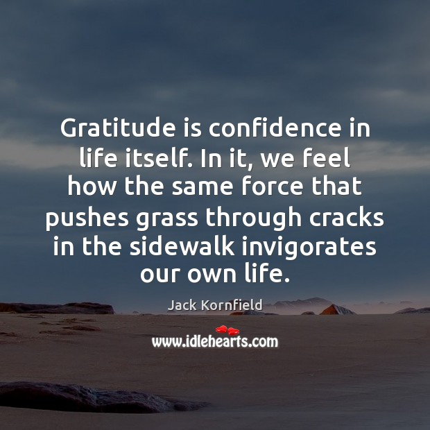 Image, Gratitude is confidence in life itself. In it, we feel how the