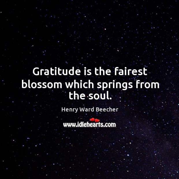 Image, Gratitude is the fairest blossom which springs from the soul.