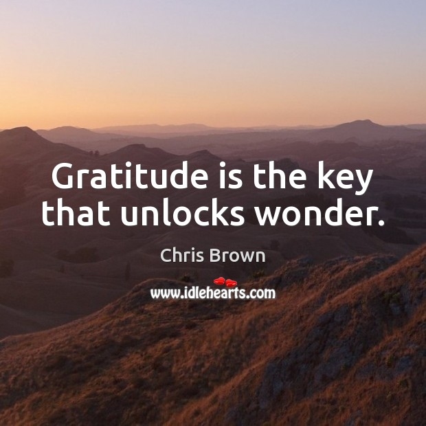 Gratitude is the key that unlocks wonder. Chris Brown Picture Quote