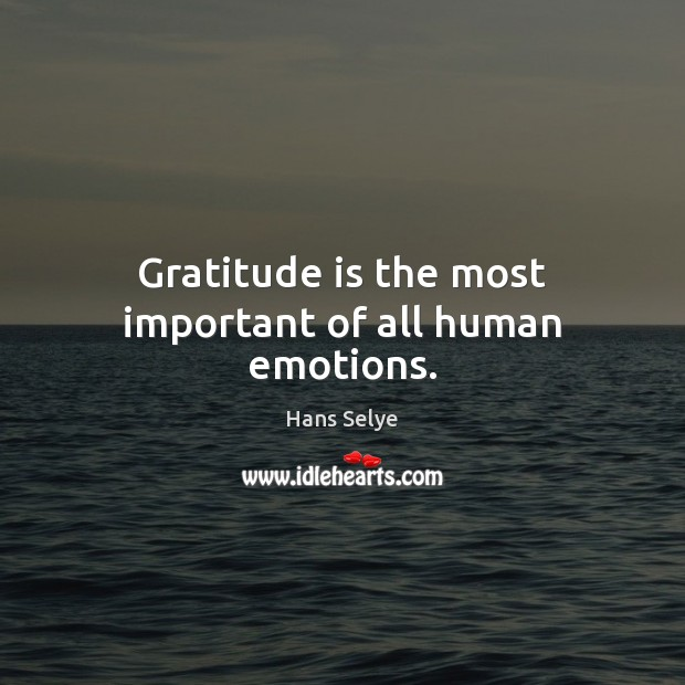 Image, Gratitude is the most important of all human emotions.