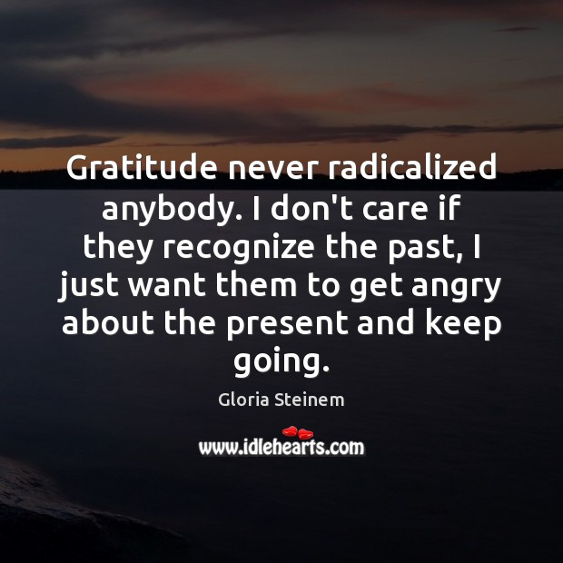 Gratitude never radicalized anybody. I don't care if they recognize the past, I Don't Care Quotes Image