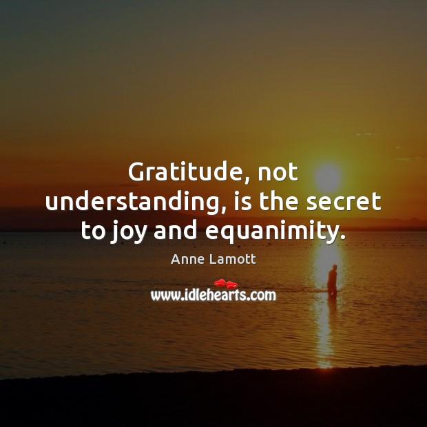 Gratitude, not understanding, is the secret to joy and equanimity. Image