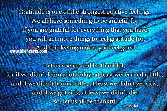 Gratitude is one of the strongest positive feelings. Be Grateful Quotes Image