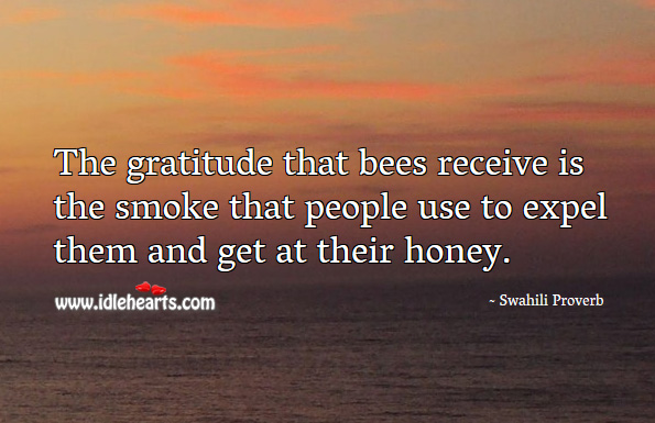 The gratitude that bees receive is the smoke that people use to expel them and get at their honey. Swahili Proverbs Image
