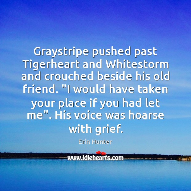 "Graystripe pushed past Tigerheart and Whitestorm and crouched beside his old friend. "" Erin Hunter Picture Quote"