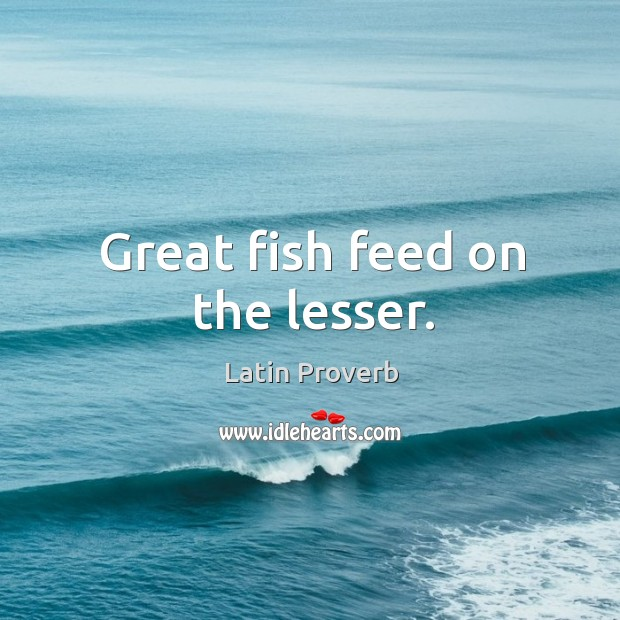 Image, Great fish feed on the lesser.