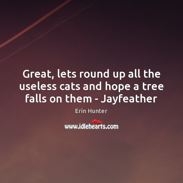 Great, lets round up all the useless cats and hope a tree falls on them – Jayfeather Erin Hunter Picture Quote